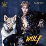Kim Woosung - WOLF