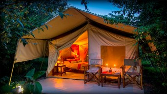 bushcamp-tent