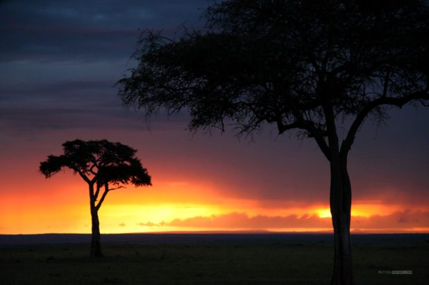 matira-safari-bushcamp-activities-sundowner-00003