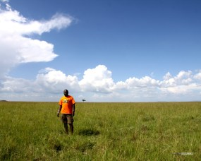 matira-safari-bushcamp-activities-walking-safari-00004