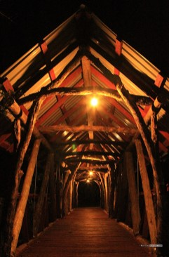 matira_bush_camp_maasai_mara_new_bridge_build_matira_safari00008