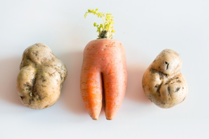 Ugly vegetables, carrot and potato on white. Concept. Flat lay.