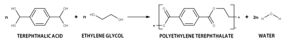 Figure 1. Schematic representation of the PET synthesis reaction