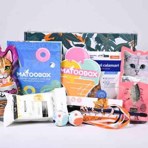 box-chats-coffret-cadeau-animaux-matou-box