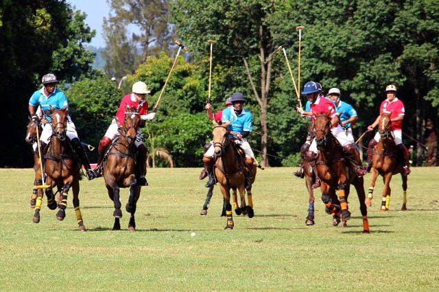 The Polo game between Barclays and Shell V-Power.