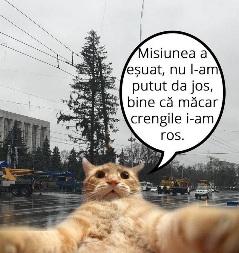 umor glumele românii de peste Prut Basarabia