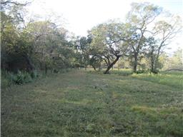 Property for sale at 0 County Road 700, Brazoria,  Texas 77422