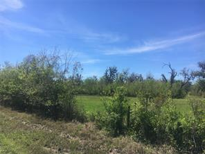 Property for sale at 0 Cr 461 Road, Brazoria,  Texas 77422