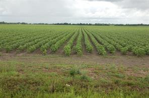 Property for sale at 7526 Fm 361 Road, Richmond,  Texas 77469