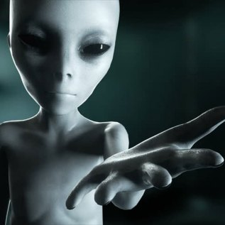 Alleged-Extraterrestrial-Races