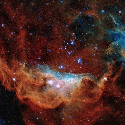 giant nebula NGC 2014 and its neighbour NGC 2020