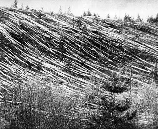 Tunguska 1908 event site