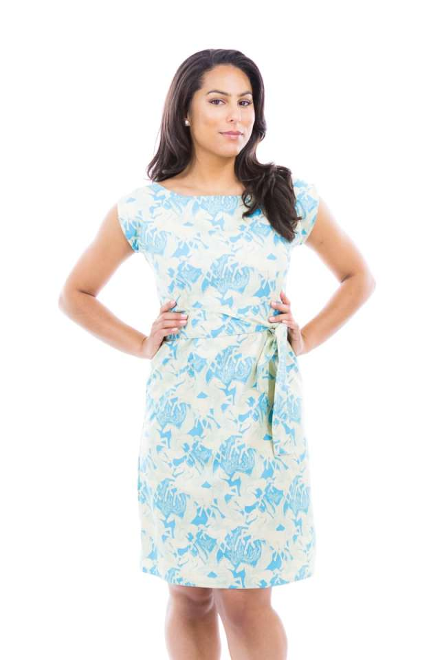 Blue and White Pegasus Dress