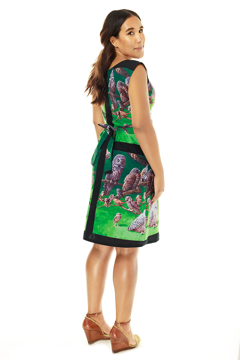 Owl Belted Blouse Dress