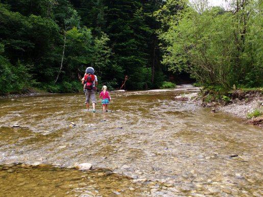 Im Fluss gibt es viel zu entdecken