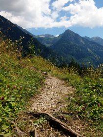 Schöne Wanderwege in Hinterstein