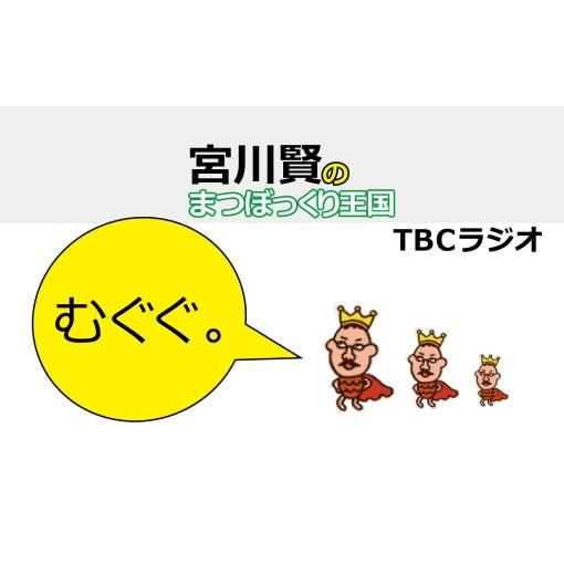 宮川賢のまつぼっくり王国20150531