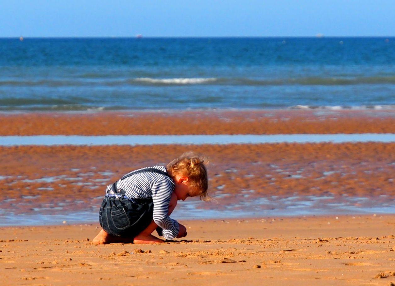 引き潮の砂浜で貝殻を探す子供。この辺りに激戦の面影はない、フランス、オマハビーチ、2015.08. © Matsuda Masahiro