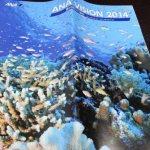 ANA VISON 2014