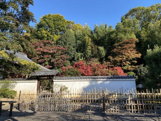 高台寺近辺