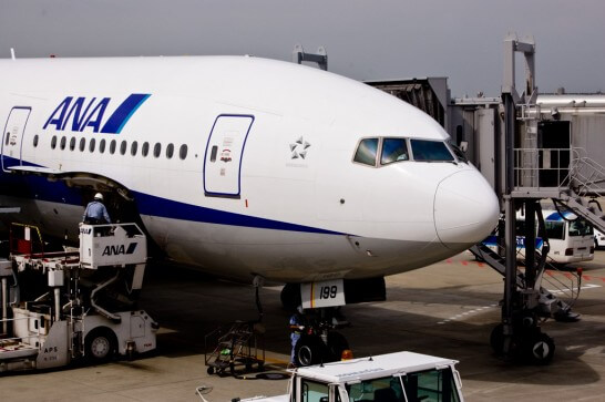ANAの飛行機の頭部