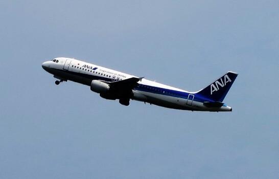 空を飛ぶANAの飛行機