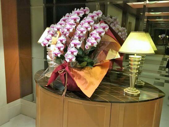 帝国ホテル大阪に飾ってある蘭