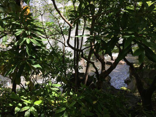 ウェスティンホテル大阪の日本庭園 (2)