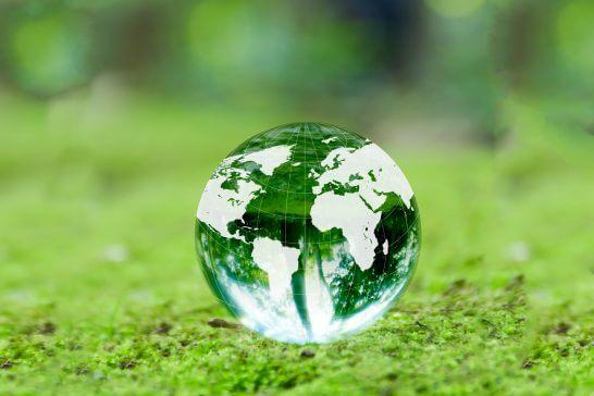 新緑と地球儀