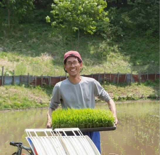 田んぼで農作業する男性