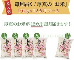 毎月届く「厚真のお米」10kg!合計120kg