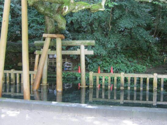 鹿島神宮の御手洗