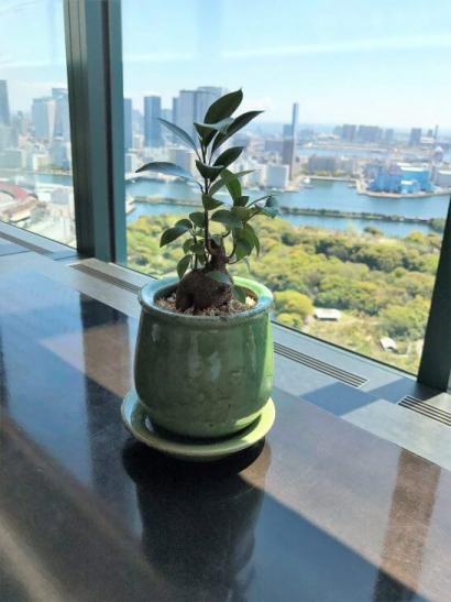 コンラッド東京の風花のインテリア