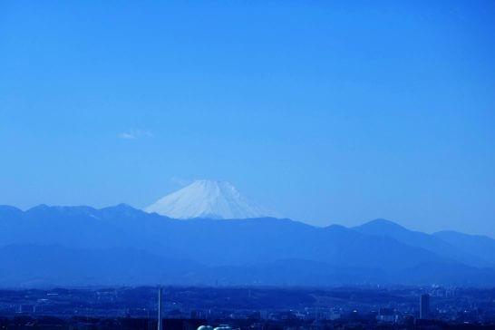 パークハイアット東京のピーク ラウンジからの眺め (1)