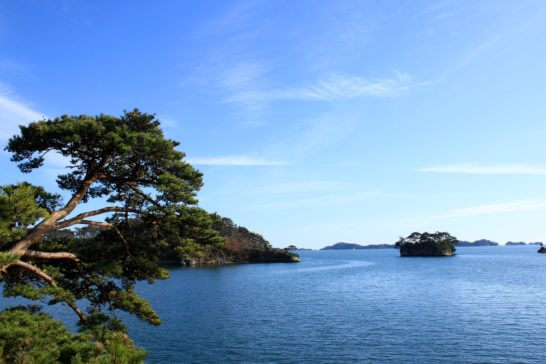 宮城県の松島