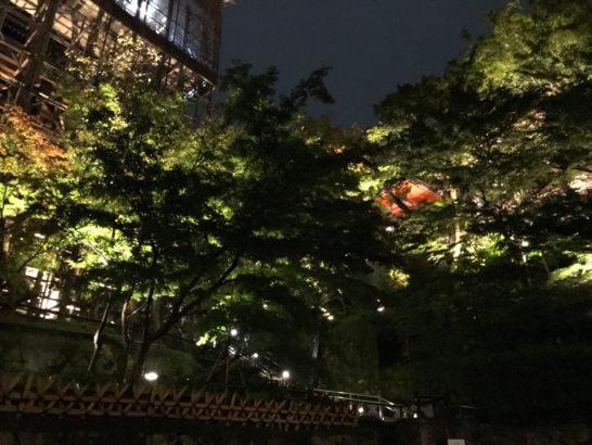 夜の清水寺(アメックスの夜間参拝イベント) (2)