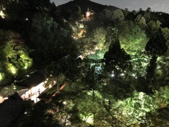 夜の清水寺(アメックスの夜間参拝イベント)の美しいライトアップ