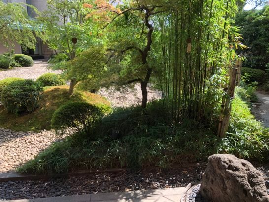 横浜ベイシェラトンホテルの木の花の庭園 (2)