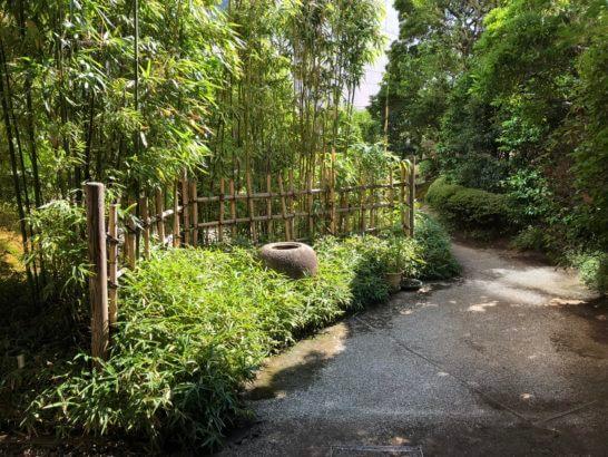 横浜ベイシェラトンホテルの木の花の庭園 (1)