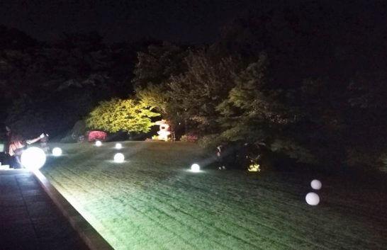 フランス大使館の夜の庭