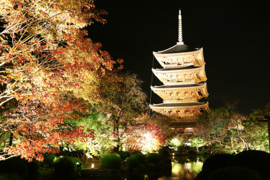 京都の世界文化遺産「東寺」の夜間ライトアップ (3)