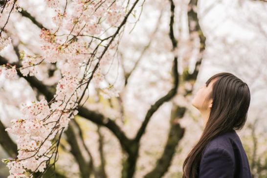 桜と女子高生