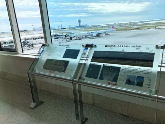 那覇空港の説明とJALの飛行機