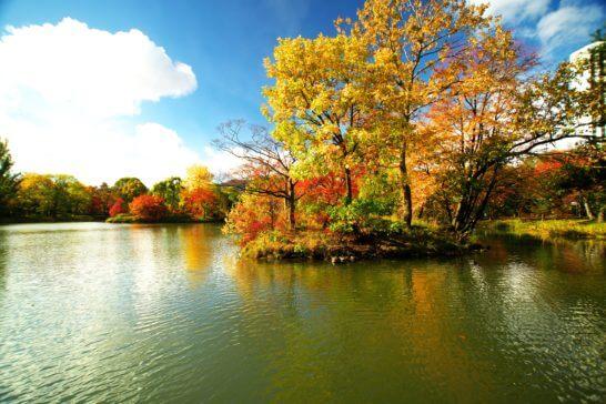 札幌の中島公園 (秋)