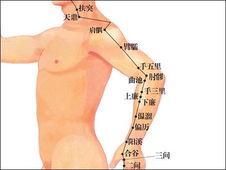ツボ生活のススメ28 (肘髎)