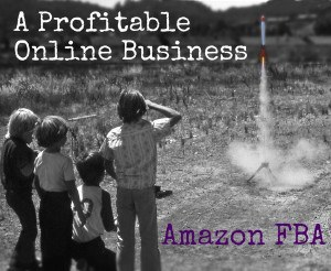 Profitable Online Business - Amazon FBA