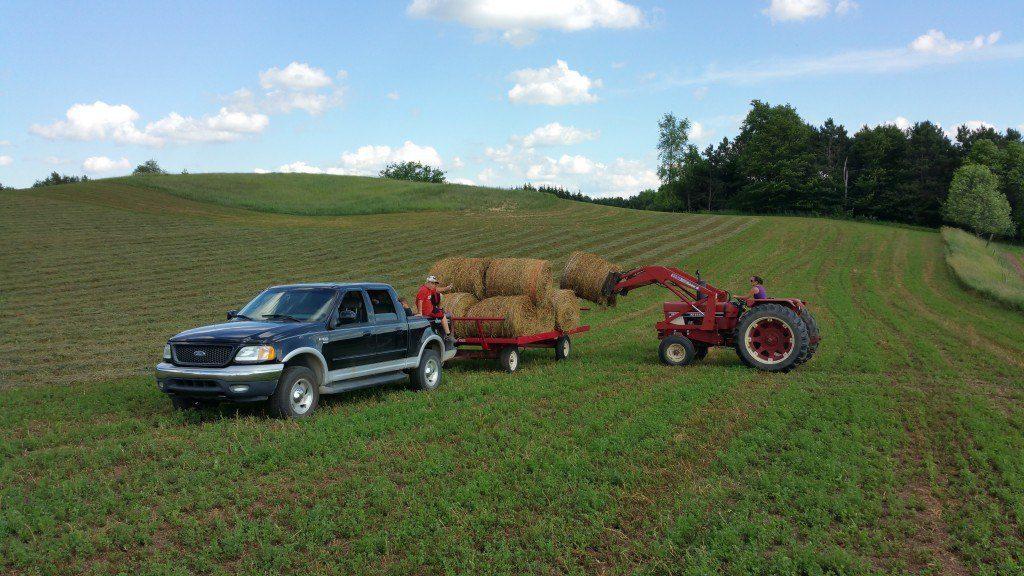 farming June 2015