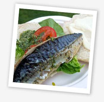 Bestival 2010 food