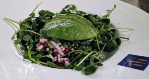 Avocado super food salad at Loch Fyne