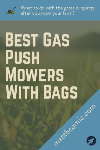 Best Gas Push Lawn Mowers With Bag